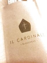 il cardinale mechelen tdrr9